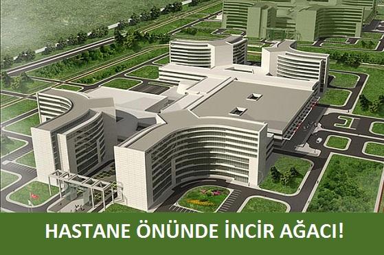 şehir hastanesi